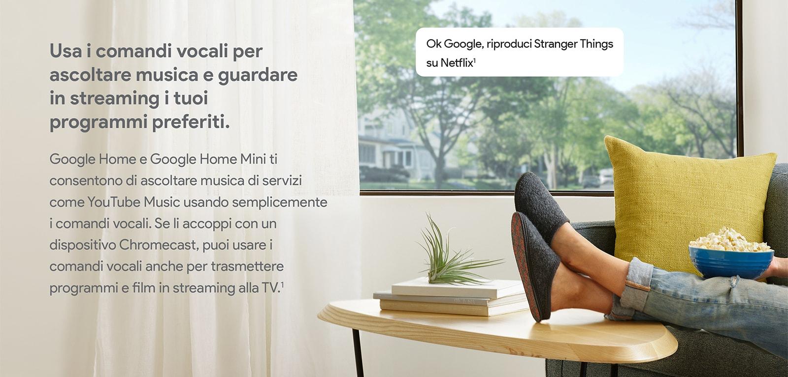 Google Home 23